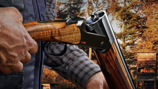 The All New Blaser F16